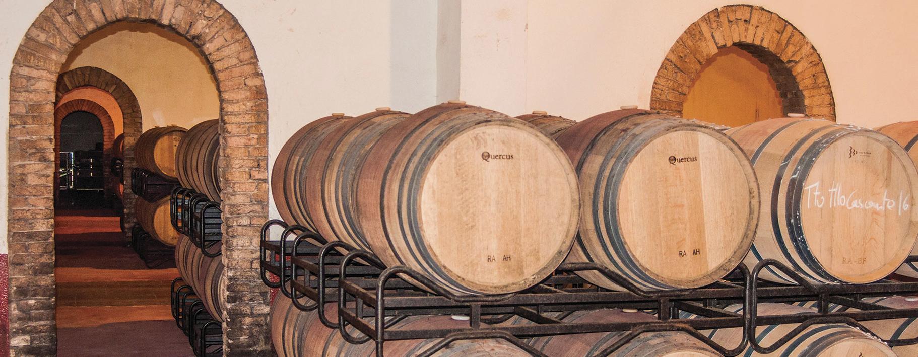 bodegas-manzanos-campanas017